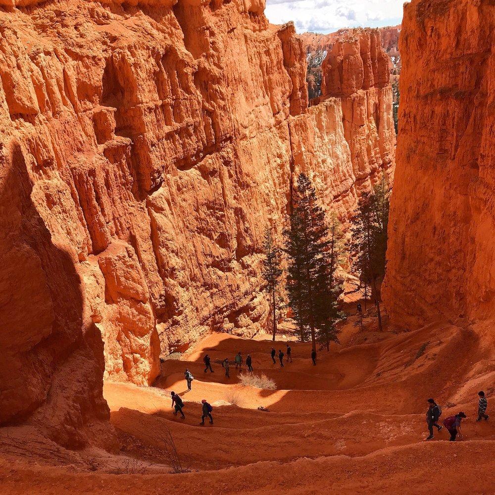 Navajo Loop: Rim Trl, Bryce, UT
