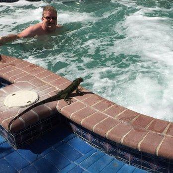 Ocean Sky Hotel Resort 109 Photos 143 Reviews Hotels 4060