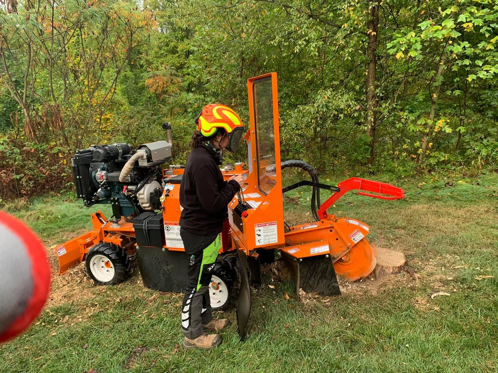 Monster Tree Service of North Pittsburgh: Grove City, PA