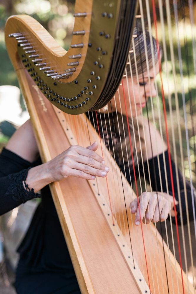 Krista Strader, Harpist