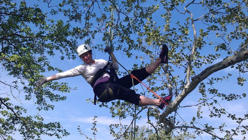 Earthjoy Tree Adventures: 3400 Bridgeville Rd, Brooksville, KY