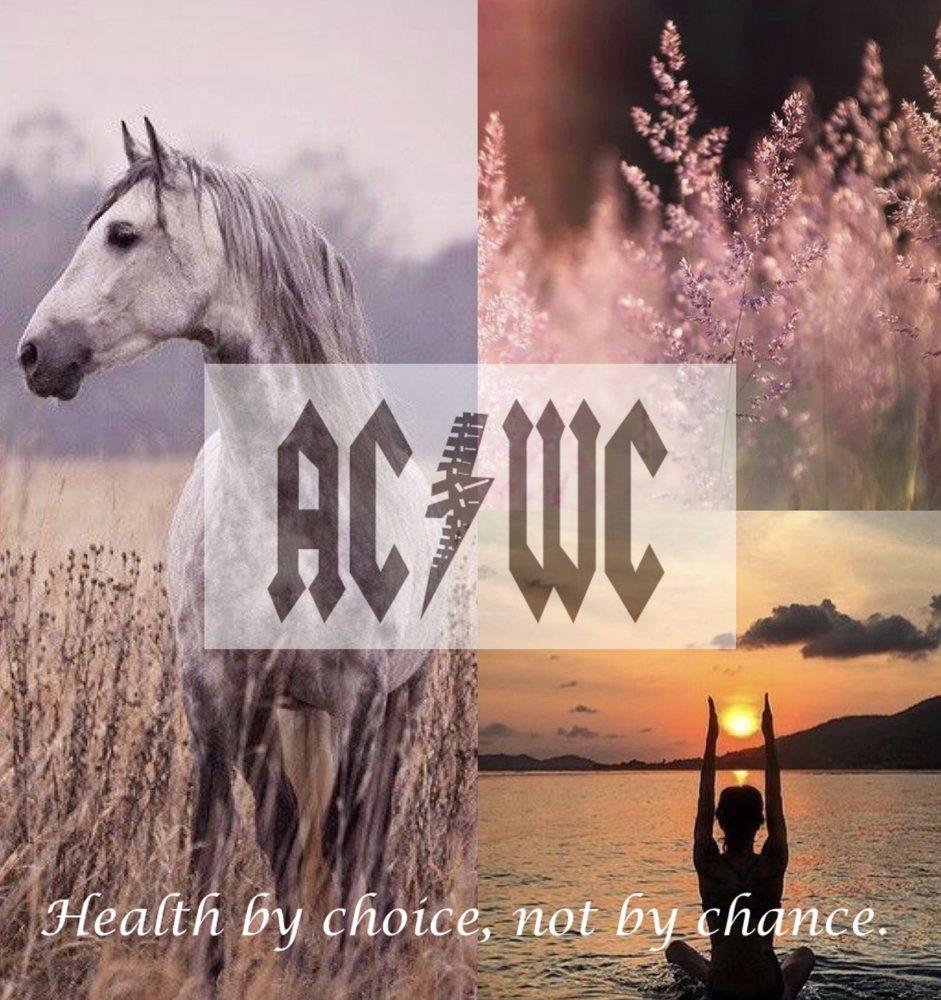 Aggieland Chiropractic & Wellness Center: 505 University Dr E, College Station, TX