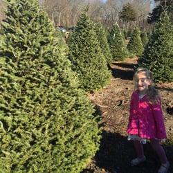 Lockwood Christmas Tree Farm Christmas Trees 129 Austin Ave  - Christmas Trees Ri