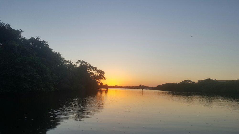 Photos For Sarasota Gondola Yelp