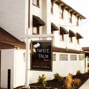 White palm topton