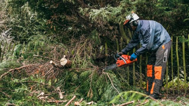 Total Tree Service: 1111 Olmstead Rd, Kalamazoo, MI