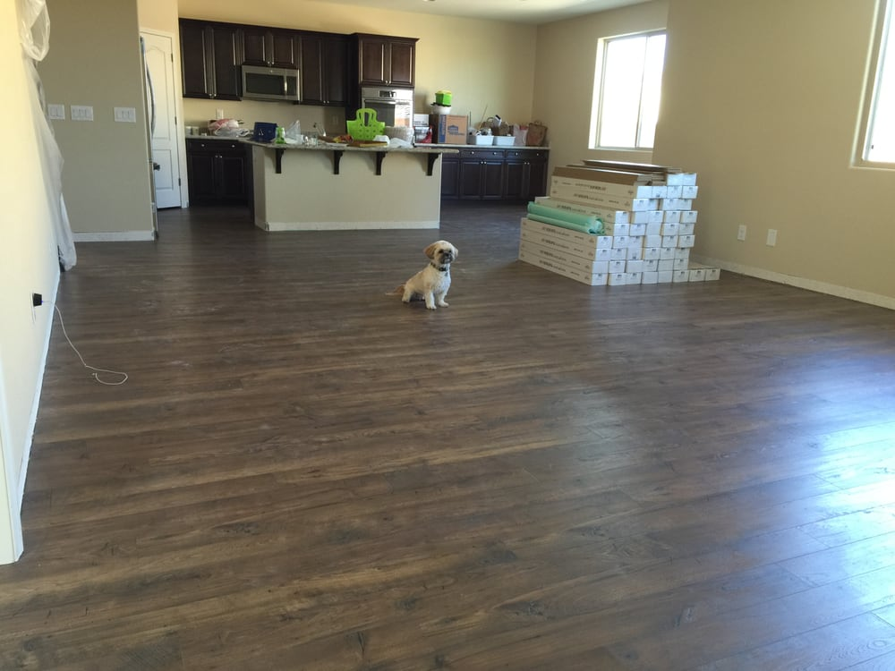 Our Dog Fozzie Enjoying The New Laminate Flooring Mid Installation