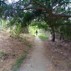 De Forest Park Nature Trail Long Beach Ca