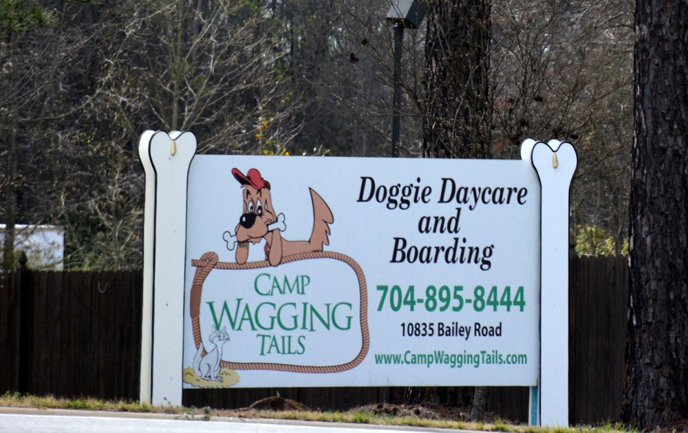 Camp Wagging Tails: 10835 Bailey Rd, Cornelius, NC