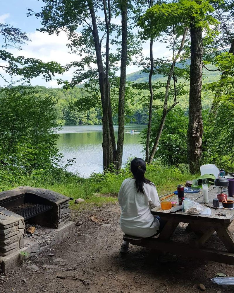 Little Pond Campground: 549 Little Pond State Campground Rd, Andes, NY