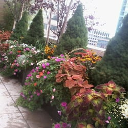 Photo Of New York Plantings Garden Design   Brooklyn, NY, United States. My