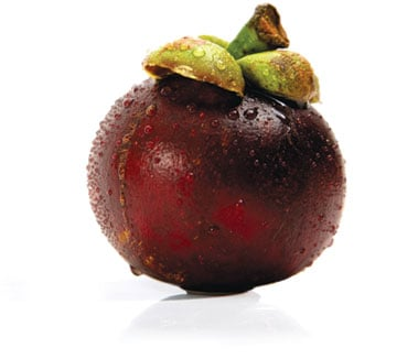 Fruit Fool
