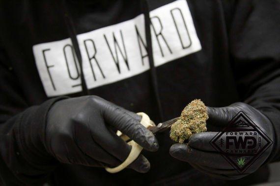 Forward Cannabis: 1580 NE 7th St, Grants Pass, OR