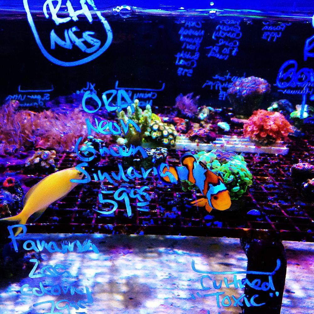 Ultimate Aquarium 18 Photos 87 Reviews Aquarium