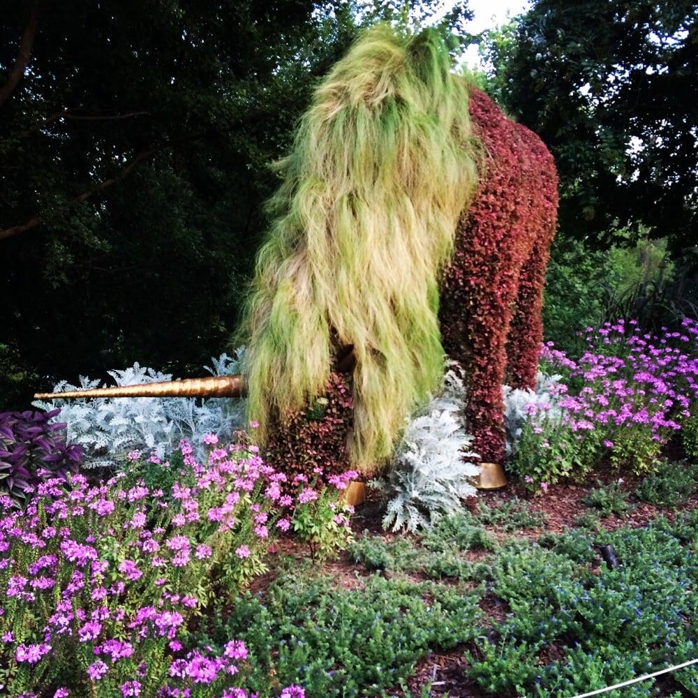 Atlanta Botanical Garden Skyline Gardens: Unicorn Made From Plants At The Imaginary Worlds Exhibit