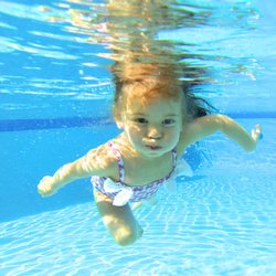 Kids Swimming bright kids swimming - 30 photos - swimming lessons/schools