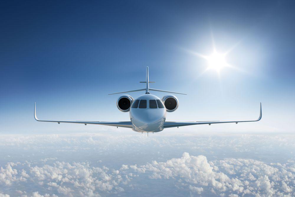Flight Incorporated: 9 McKnight Rd, Senoia, GA
