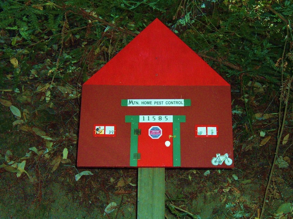 Mountain Home Pest Control: Brookdale, CA