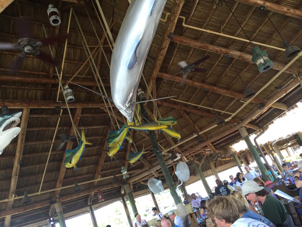 This is the decoration of fishes hanging from the roof it for Islamorada fish company menu
