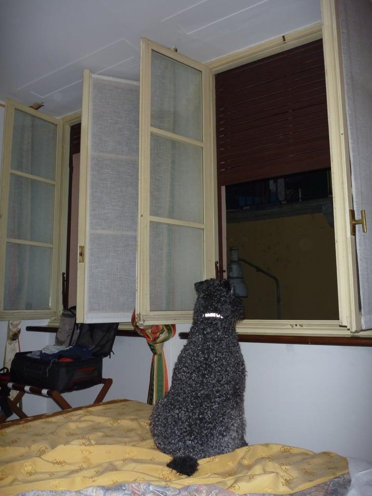 hotel saini meubl hotels via garibaldi 10 stresa