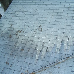 Superior Photo Of Bay Area Roof Cleaning Company   New Port Richey, FL, United States