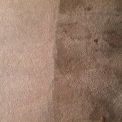 Photo Of Best Carpet Cleaning Winter Springs Fl United States