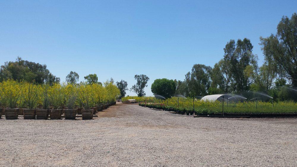 Marbil Nursery Creations: 15995 W Northern Ave, Litchfield Park, AZ