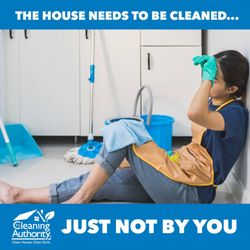 The cleaning authority spring tx