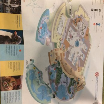Photo Of Shedd Aquarium Chicago Il United States Map Of The Exhibits