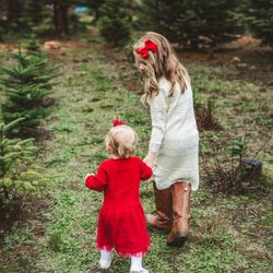 Hemstrom Valley Tree Farm Christmas Trees 21 Photos