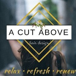 A cut above hair design hair salons 323 e north st for A cut above salon