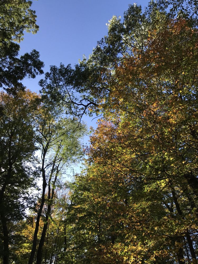 Deep River County Park: 9410 Old Lincoln Hwy, Hobart, IN