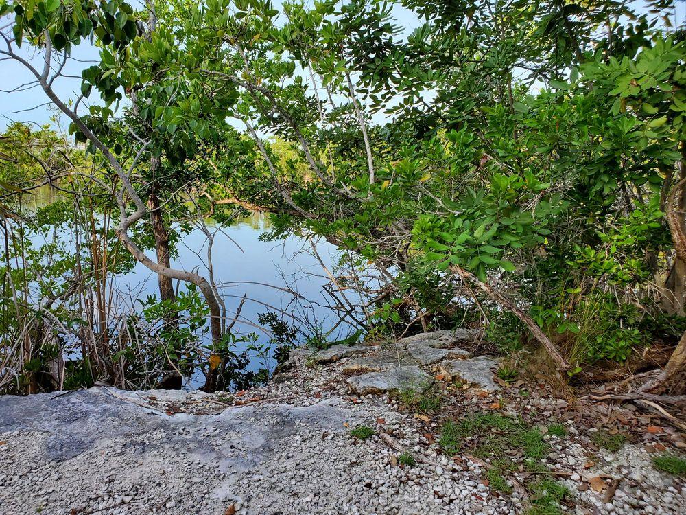 Blue Hole Observation Platform: Key Deer Boulevard, Big Pine Key, FL