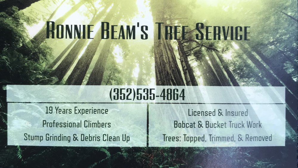 Ronnie Beams Tree Service: Beverly Hills, FL