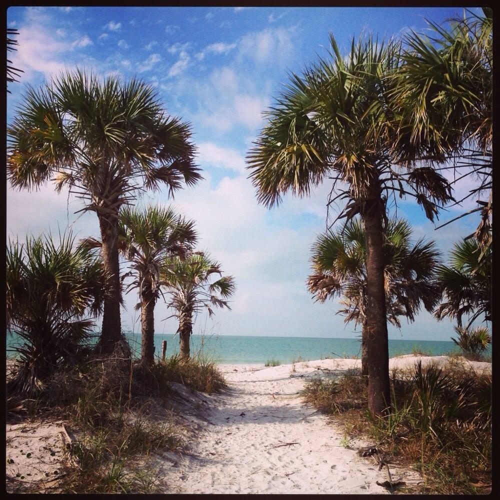 Caladesi Island Florida: Caladesi Island Inland