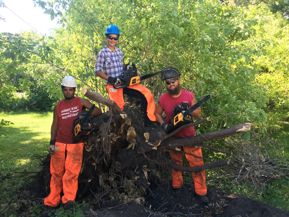 4 Seasons Tree and Yard Services: Wilton, ND