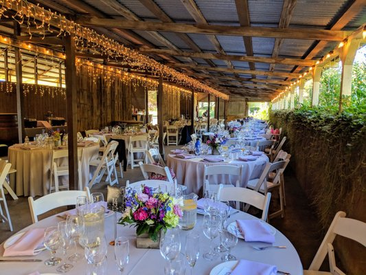Celebrations Party Rentals And Tents Event Rentals Roseville