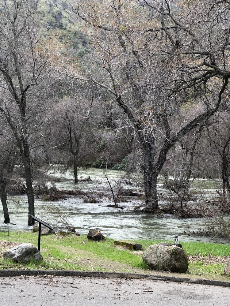 Putah Creek Nature Park: 4550 Putah Creek Rd, Winters, CA