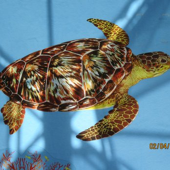 Photo Of Loggerhead Marinelife Center Juno Beach Fl United States Turtle Graphic