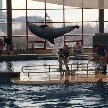 National Aquarium 1335 Photos 701 Reviews Aquariums