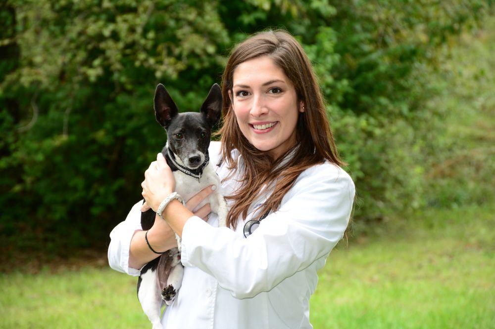 Roseville Veterinary Clinic: 26 S Greenway Ave, Boyce, VA