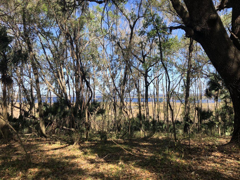Bolen Bluff Trail: 100 Savannah Blvd, Micanopy, FL