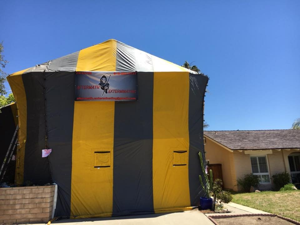 Aftermath Exterminating: 135 Willowside Terrace, Alpine, CA