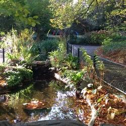 photo de le jardin des plantes caen calvados france intrieur du jardin - Jardin Des Plantes Caen