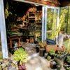 Sierra Water Gardens