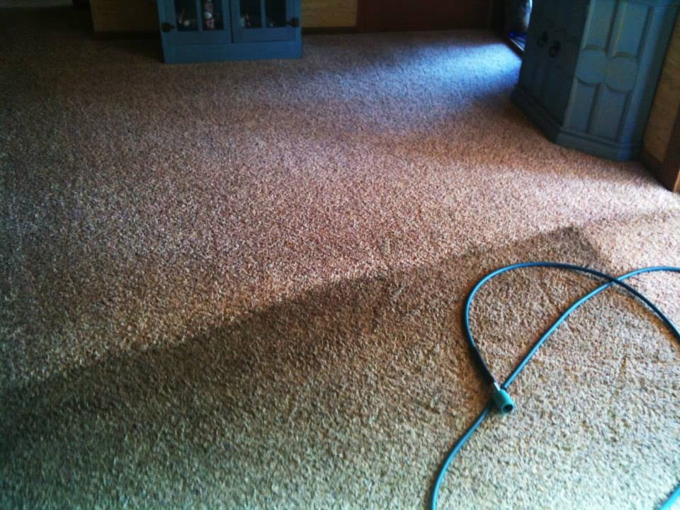 Johnson and Son Carpet Cleaning: Jackson, CA
