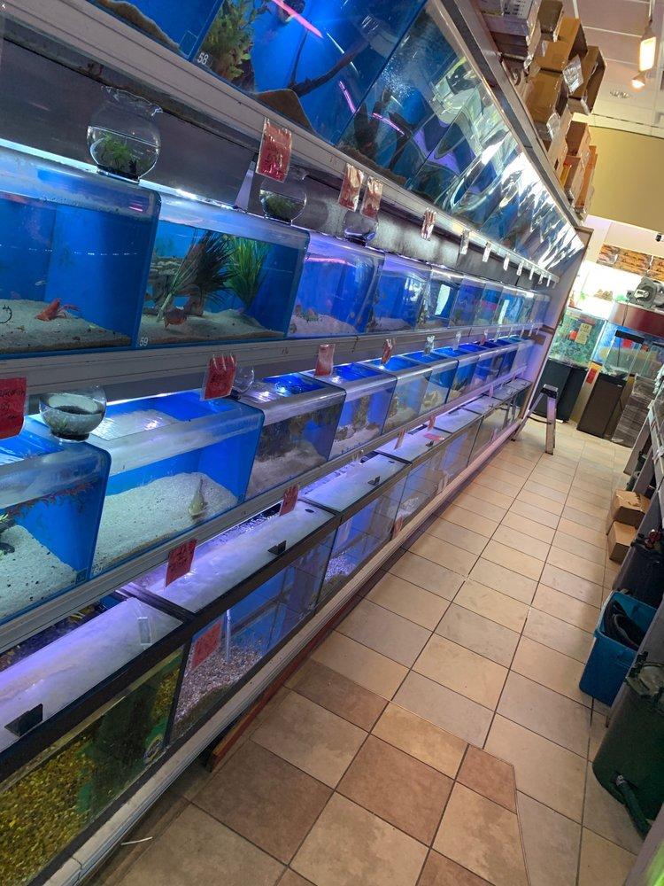 Fish & Pets Unlimited: 11710 Bissonnet, Houston, TX