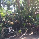 Photo Of Delray Garden Center   Delray Beach, FL, United States