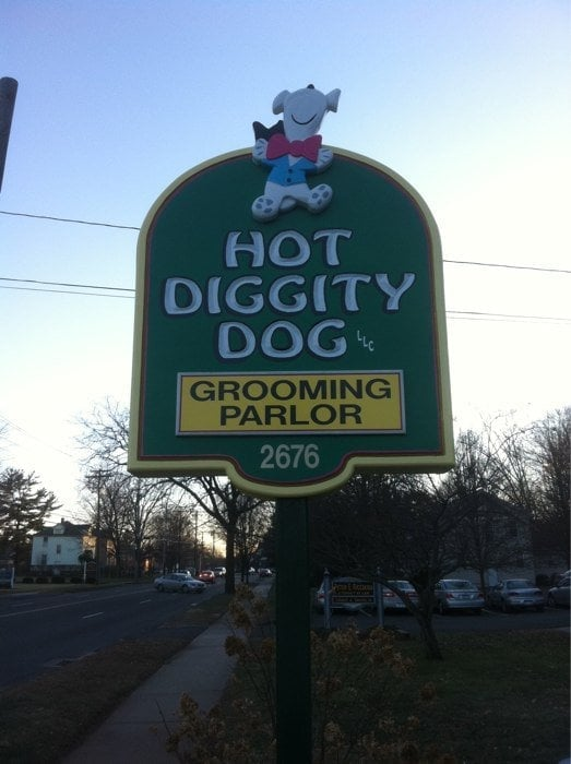 Hot Diggity Dog Grooming Hamden Ct