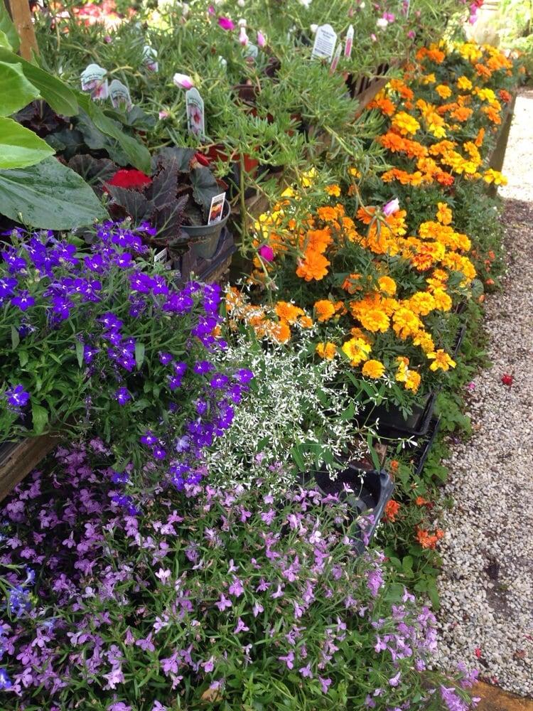 Photos For Gardens In A Flowerpot Yelp
